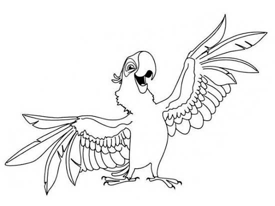 Kleurplaten Over Vogels.Kleurplaten En Spreekbeurt Papegaaien Villa Filou